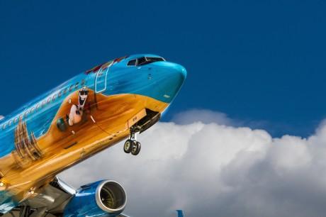 מידע על ביטוח נסיעות לחו